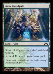simicguildgate