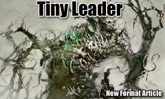 tiny leader