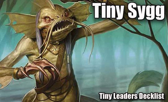 tiny sygg